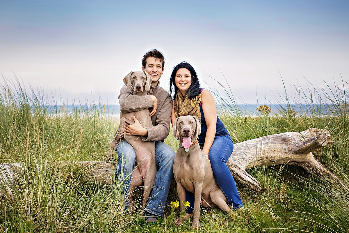 Two Weimaraners and their family by the beach.