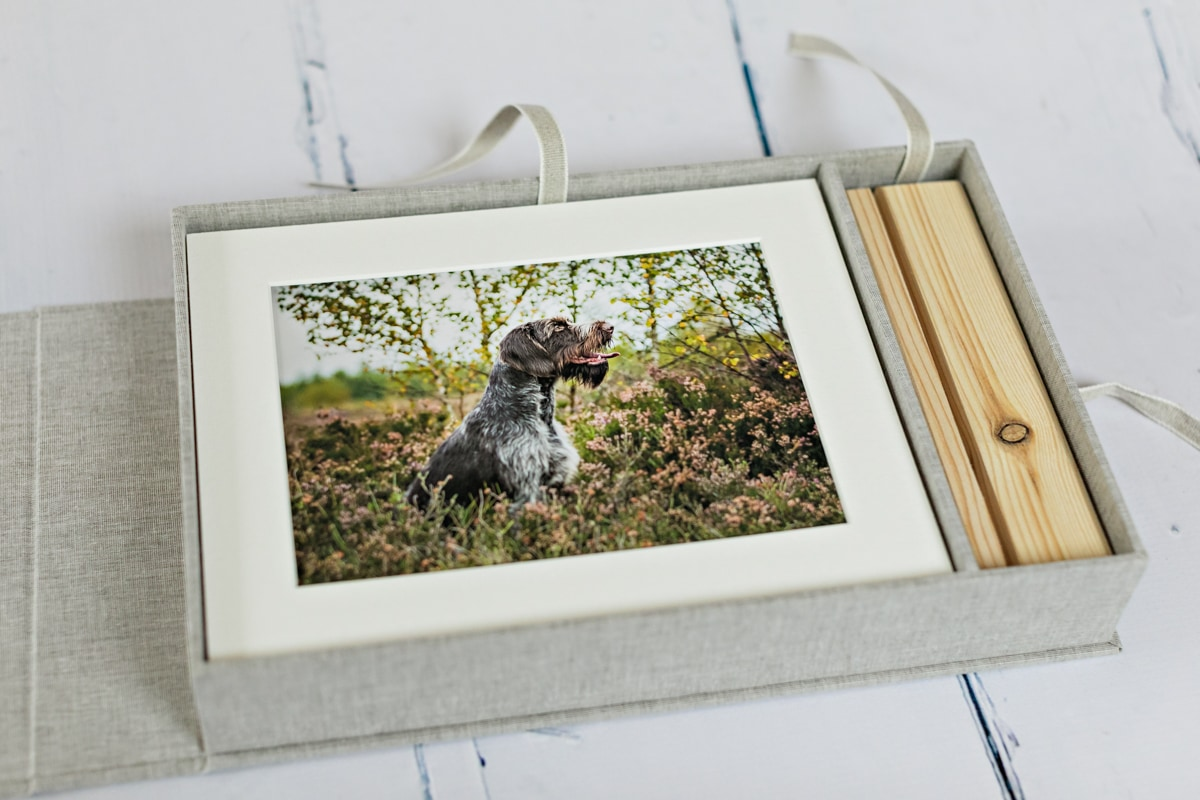 A print box with mounted prints featuring a dog.