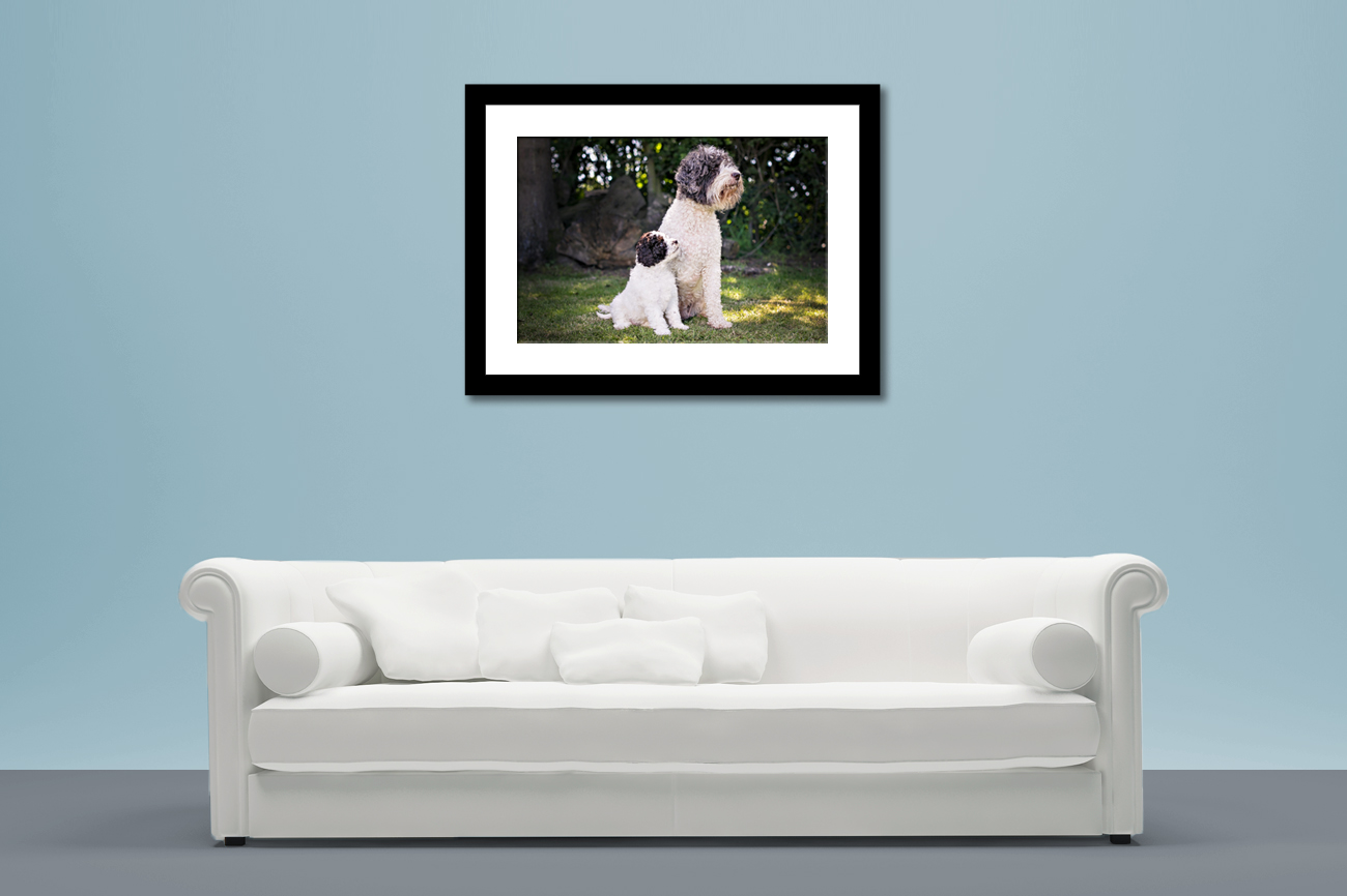 A framed print featuring two dogs, situated on a wall above a sofa.